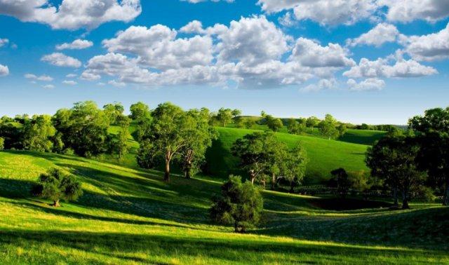 Как экологическая обстановка влияет на аллергию? 3