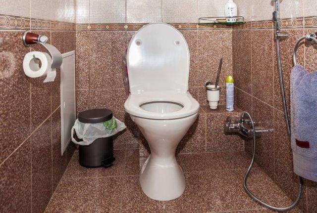 Частые походы в туалет ночью, как признак гипертонической болезни 3