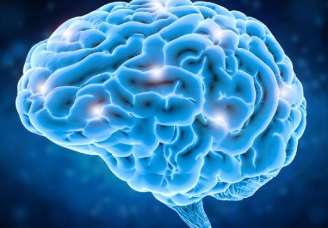 Мозг несовершенного исполнения математически оптимального восприятия 2